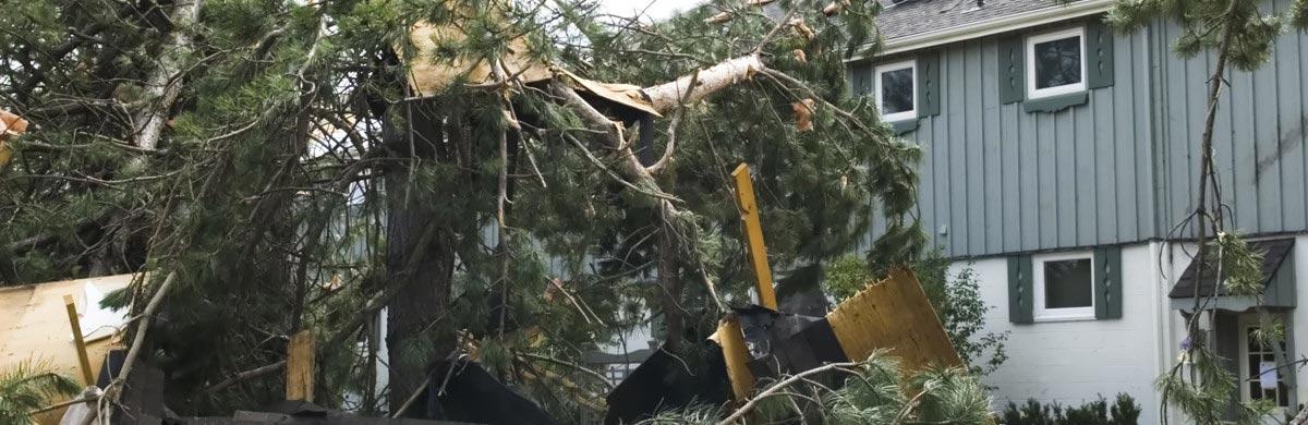 Catastrophes Naturelles Pour Une Association Maif